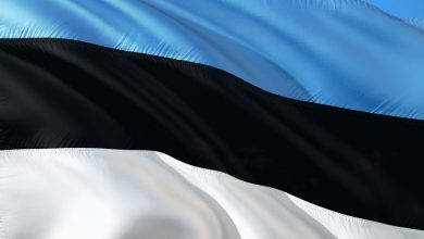 Photo of New president: Preamble of Constitution contains genetic code of Estonian state